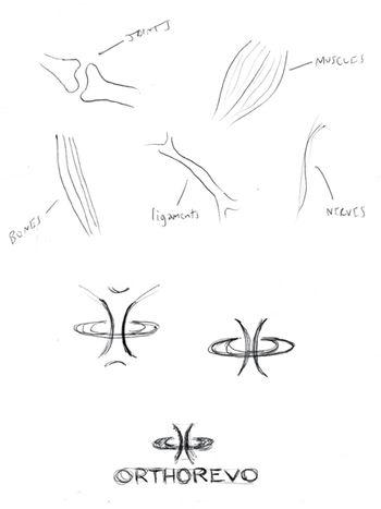 Orthorevo sketches